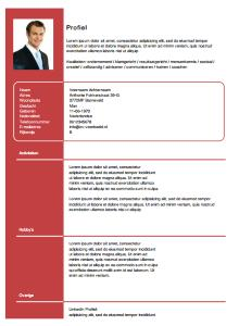 25 Excellent Cv Template Gratis for Graphics
