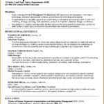 27 Best College Resume Examples by Gallery