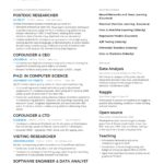 28 Nice A One Page Resume with Graphics