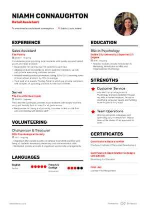 29 Excellent Best Resume Samples by Graphics