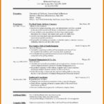 30 Cool Best Executive Resume Templates 2018 for Design