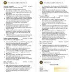 30 Great Executive Resume Samples with Graphics