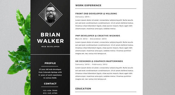 31 Best Free Creative Resume Templates Microsoft Word for Pics