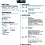 32 Nice Elon Musk Resume for Images