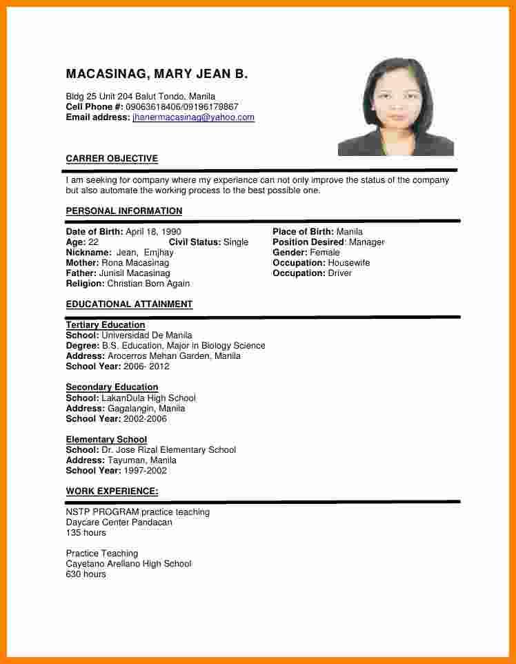 33 New Sample Resume Format with Gallery