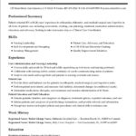 34 Lovely New Resume Format for Ideas