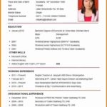39 Great Resume For Job Application by Pictures