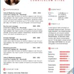 39 Lovely English Cv Template for Pictures