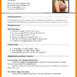 40 Beautiful Updated Resume Format by Ideas
