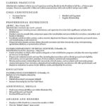 40 Great Free Resume Writer with Gallery
