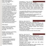 40 Lovely Professional Looking Resume Template by Images