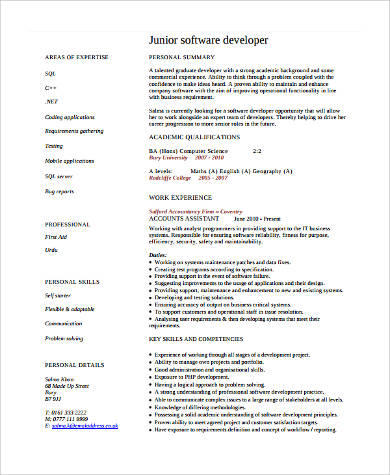 41 Inspirational Software Engineer Cv for Design