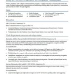 43 Beautiful Beginner Job Application Resume Sample with Pictures