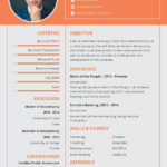 43 Great New Resume Format with Design