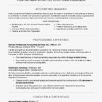 43 Top Experience Description Resume Examples with Pics