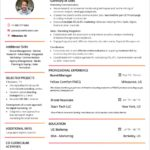 44 Best New Resume Format with Ideas