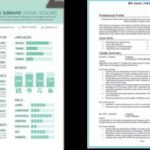 44 Excellent Cv Page Layout with Pics