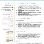 44 Nice Examples Of Skills Based Resume by Graphics