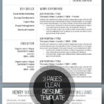 46 Top Best Looking Resume Templates with Pictures