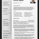 47 Beautiful Professional Cv Format by Images