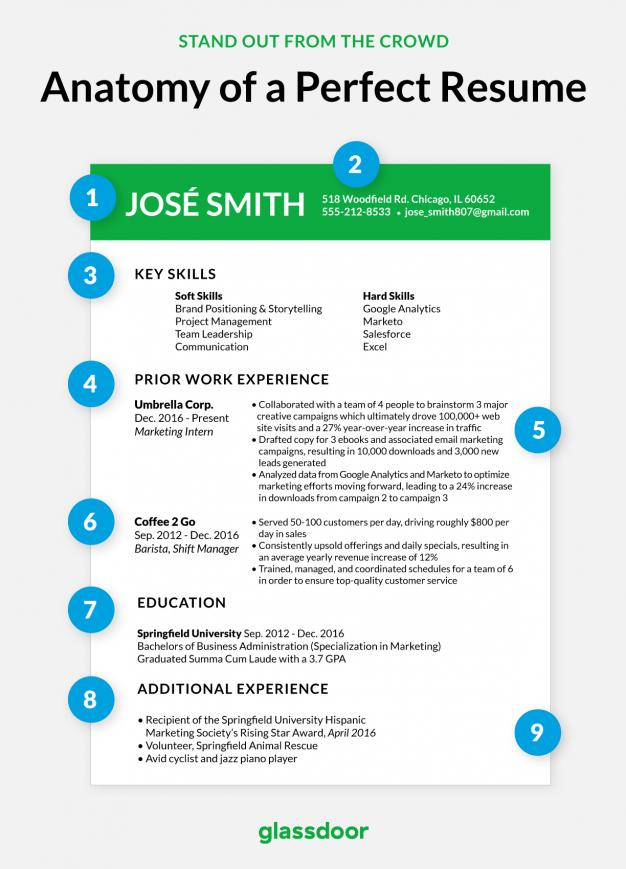 47 New How Does A Good Resume Look for Graphics