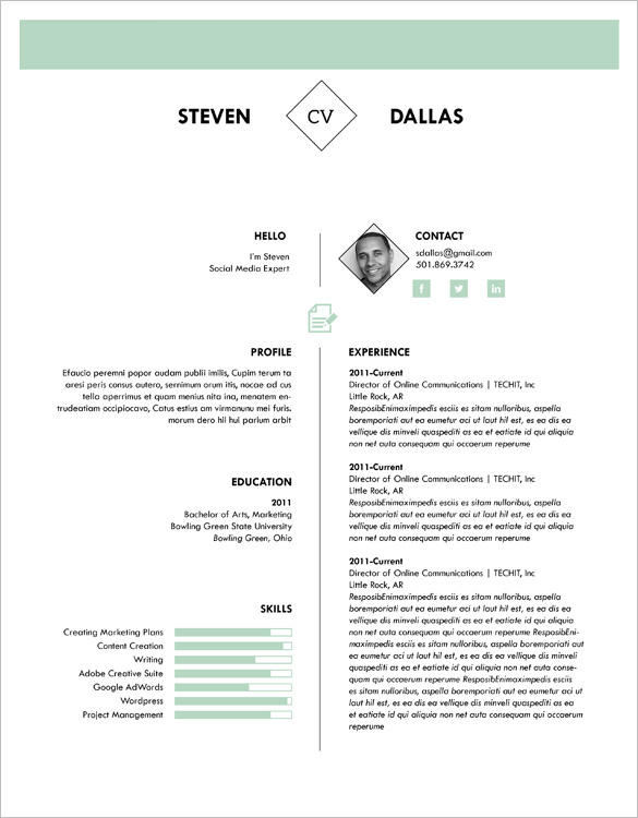 47 New One Page Curriculum Vitae by Graphics