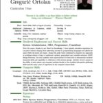 47 Nice Resume Template Pdf for Pictures