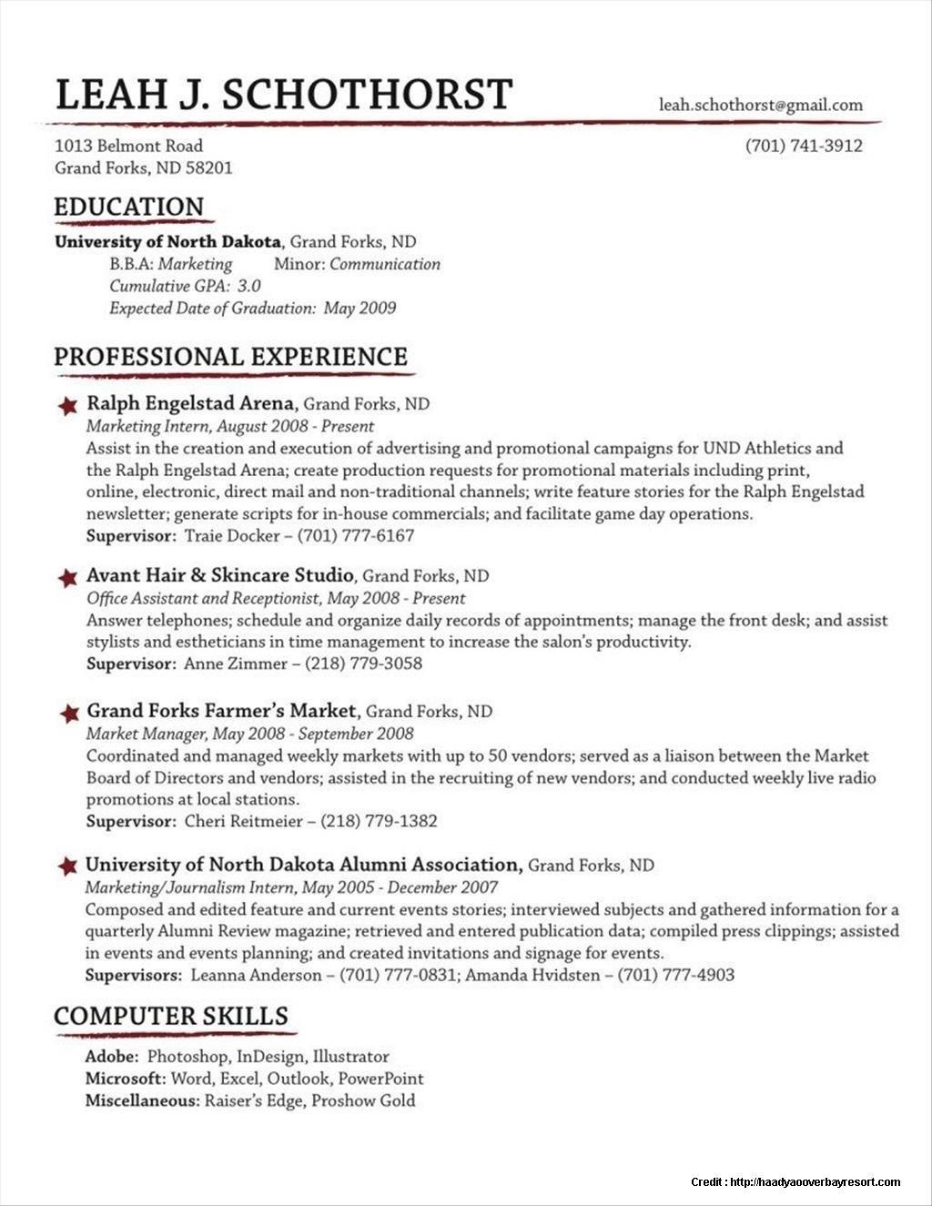 49 Excellent Traditional Resume Template Free with Pics