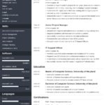 50 Fresh Online Resume Template by Graphics