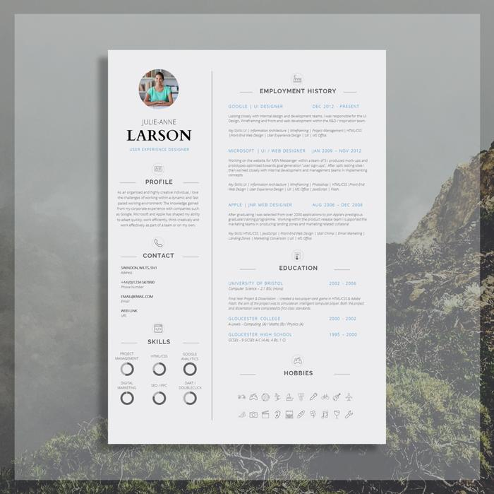 50 Great Perfect Cv Format with Images