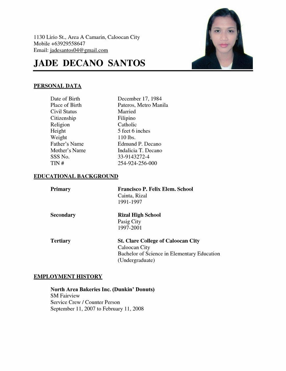 50 Great Resume Format Examples by Images