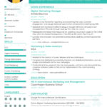 52 Excellent New Resume Format with Ideas