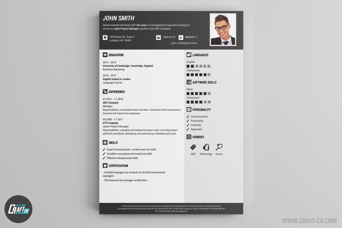 53 New Curriculum Vitae Template with Graphics