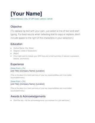 53 Top Resume Examples Word with Images