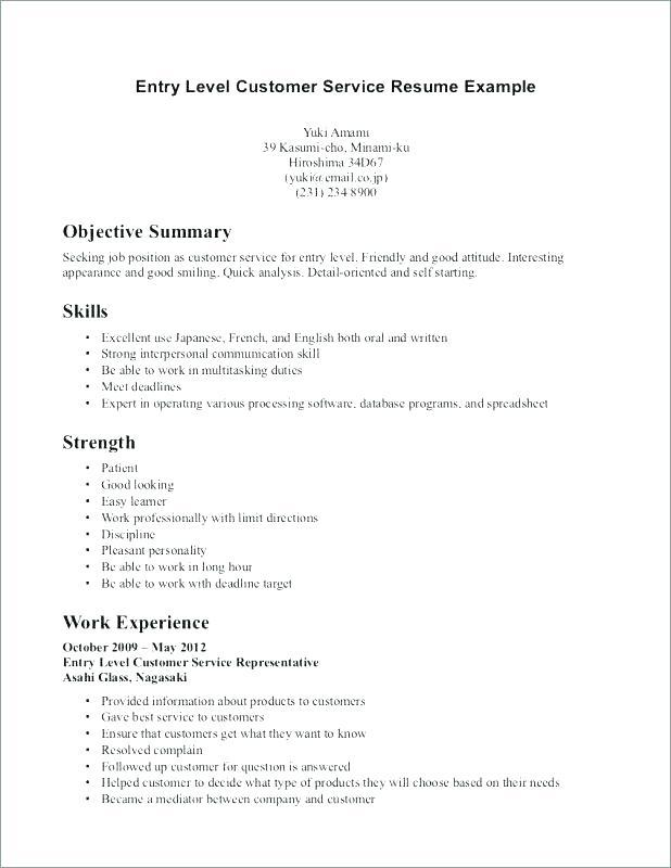 55 Nice Customer Service Resume Objective Or Summary Examples with Pics