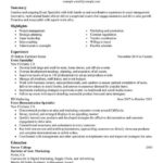 56 Great Experience Description Resume Examples by Design