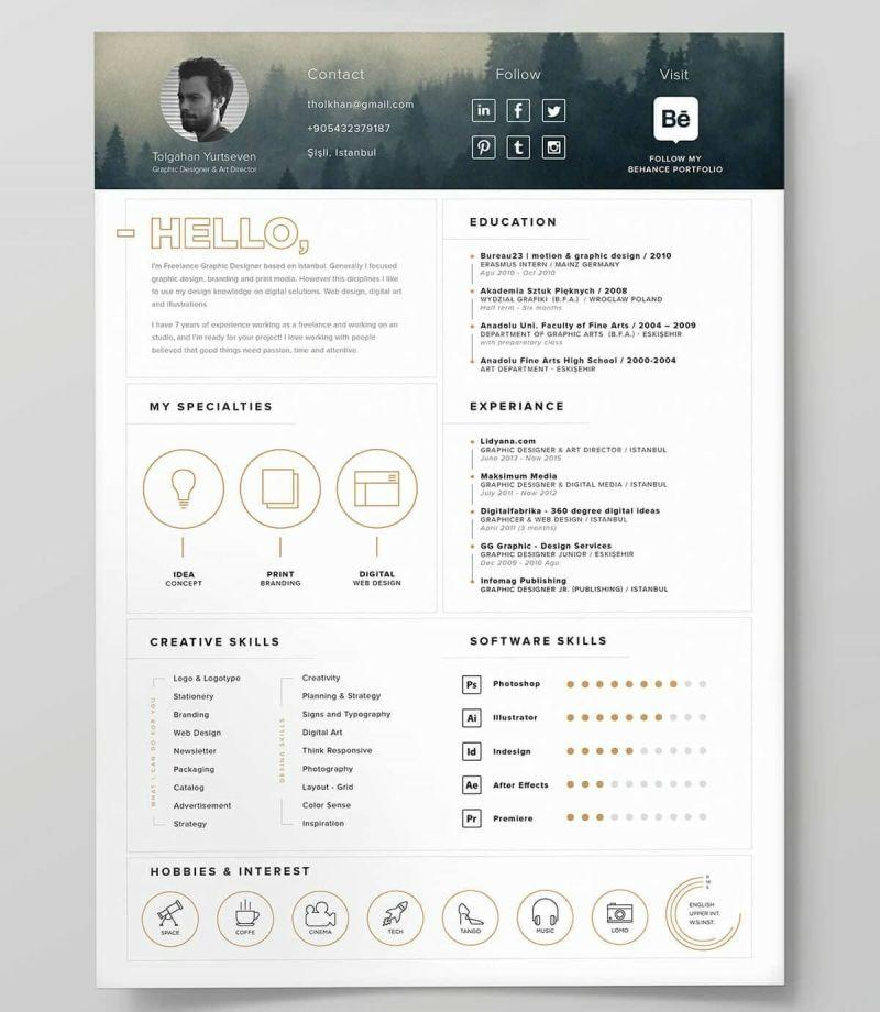 56 Top Great Looking Resume Templates by Pictures