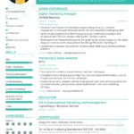 59 Awesome How To Prepare Resume for Graphics