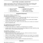 60 Fresh Experience Description Resume Examples for Ideas