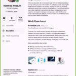 61 Cool Elon Musk Cv for Graphics
