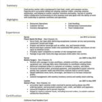 61 Excellent Executive Resume Samples with Graphics