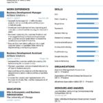 62 Nice New Resume Format with Graphics