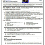 63 Lovely Professional Resume Format for Ideas