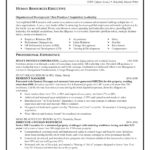 64 Great Best Executive Resume Templates 2018 for Ideas