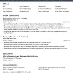 66 Lovely Job Resume Template by Ideas