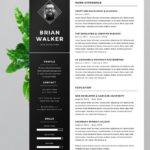 67 Awesome Eye Catching Resume Templates Free Download with Design