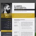 67 Best Professional Resume Design Templates with Design