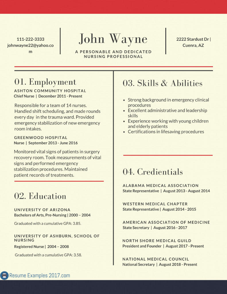 Best Professional Resume Examples 2018
