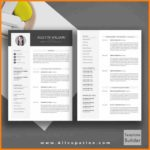 71 Cool 2 Page Resume Template Word for Graphics