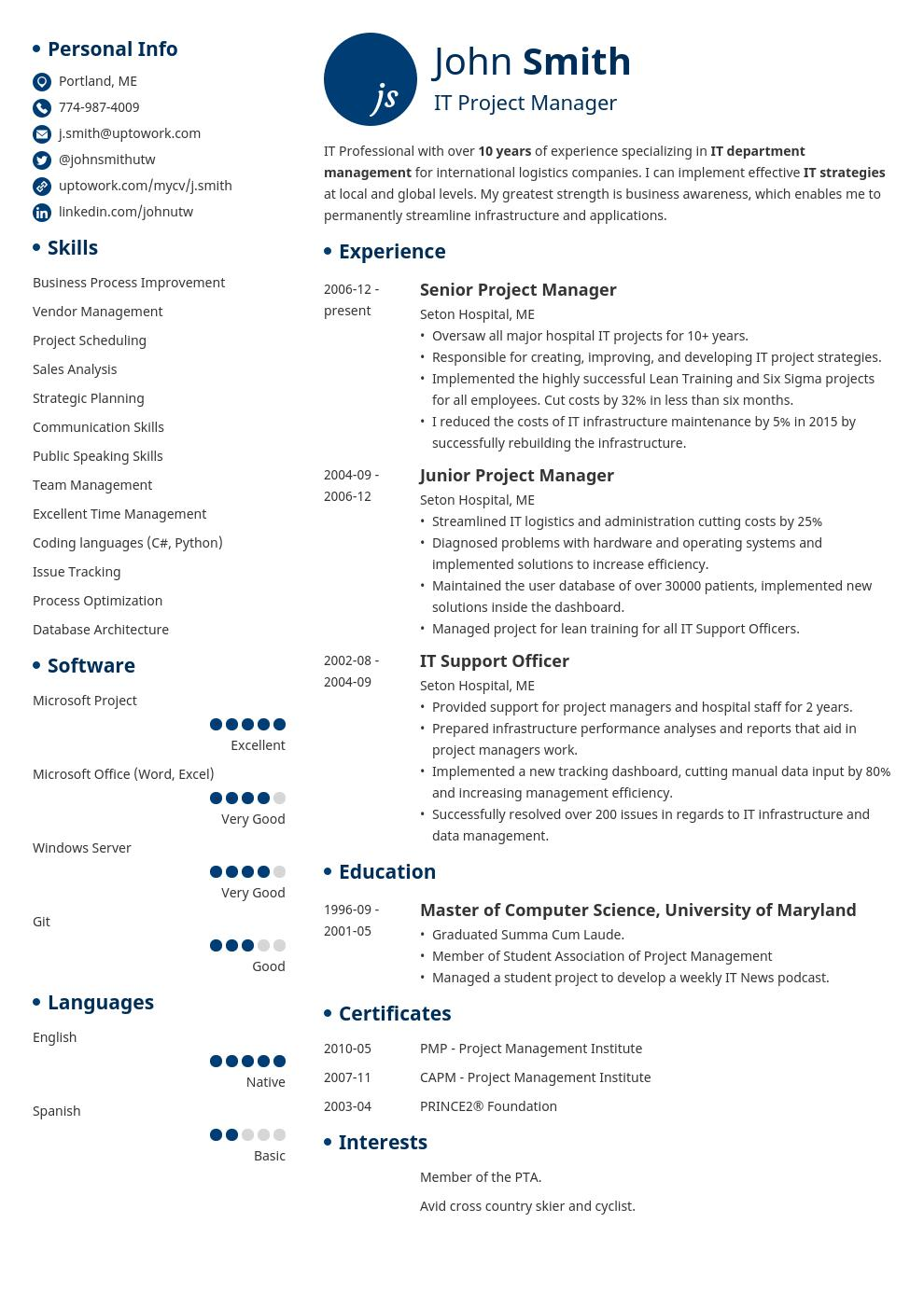 74 Fresh It Professional Resume Templates by Images